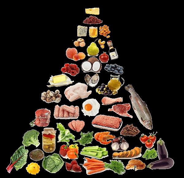 Dieta Paleo 1